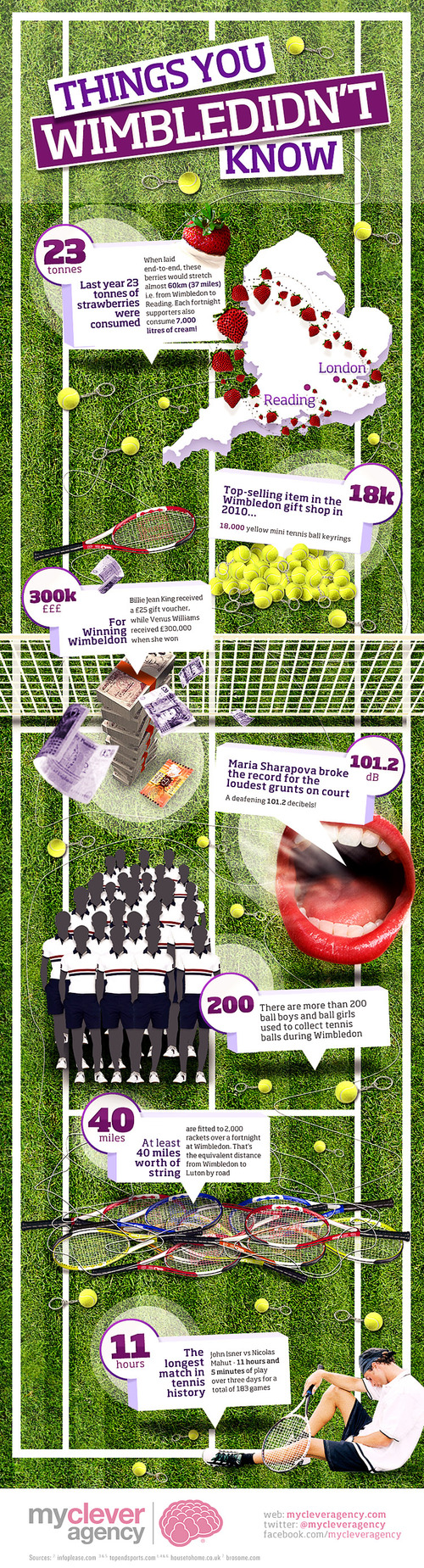 Things you Wimbledidn't Know