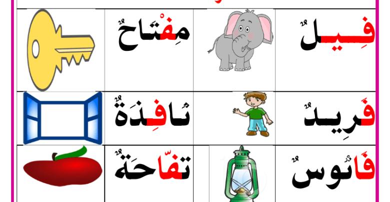 حرف التاء حرف الحاء حرف الطاء حرف الزاي حرف الفاء حرف القاف لتحميل او طباعة الملف بجودة عالي Kids Rugs Arabic Alphabet Classroom