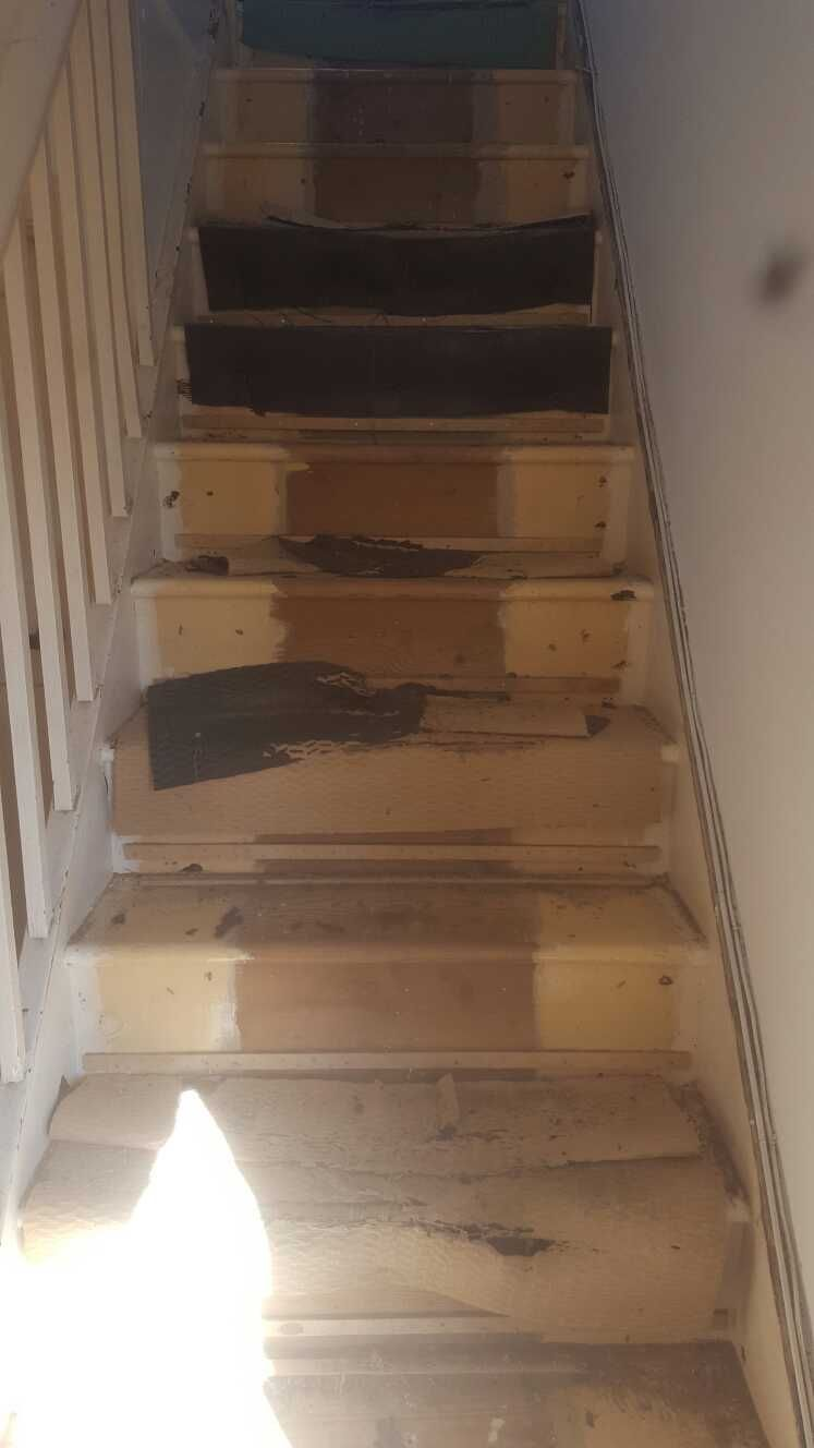The Stairs Are Bare And Need Carpet Carpet Fitting Carpet Replacement Swiss Cottage