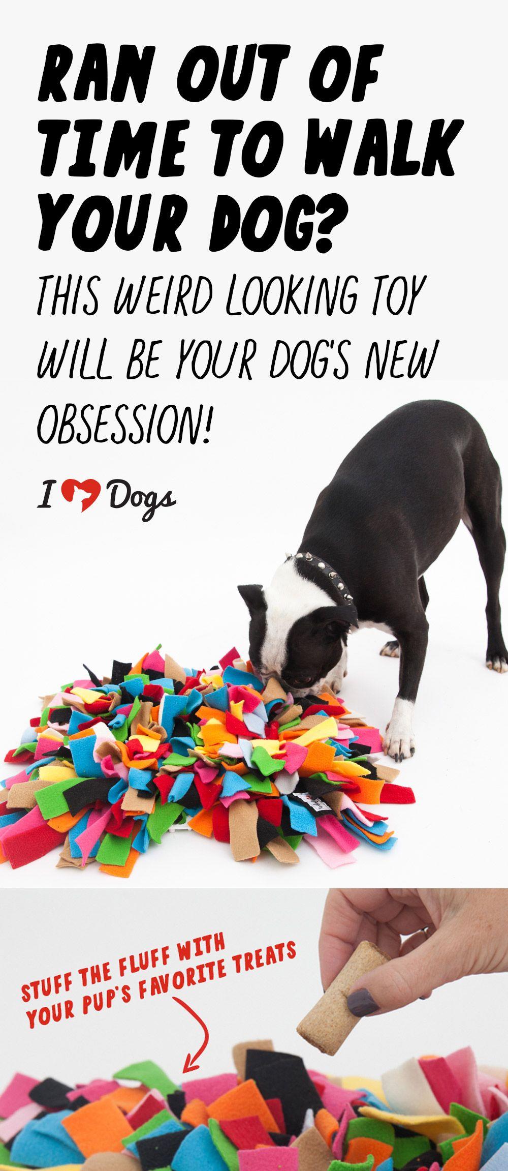 Dog Toy From Old T Shirts Diy Dog Stuff Diy Dog Toys Diy