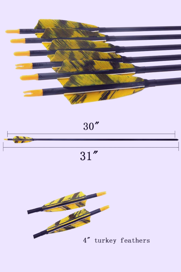 PG1ARCHERY 30 Inch Carbon Hunting Arrows, feather fletched carbon