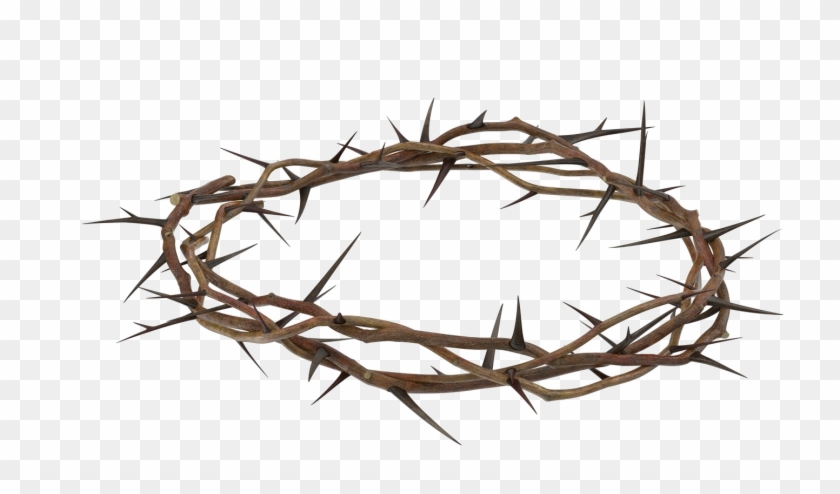 Crown Of Thorns 1640850 Crown Of Thorns Thorn Tattoo Clip Art