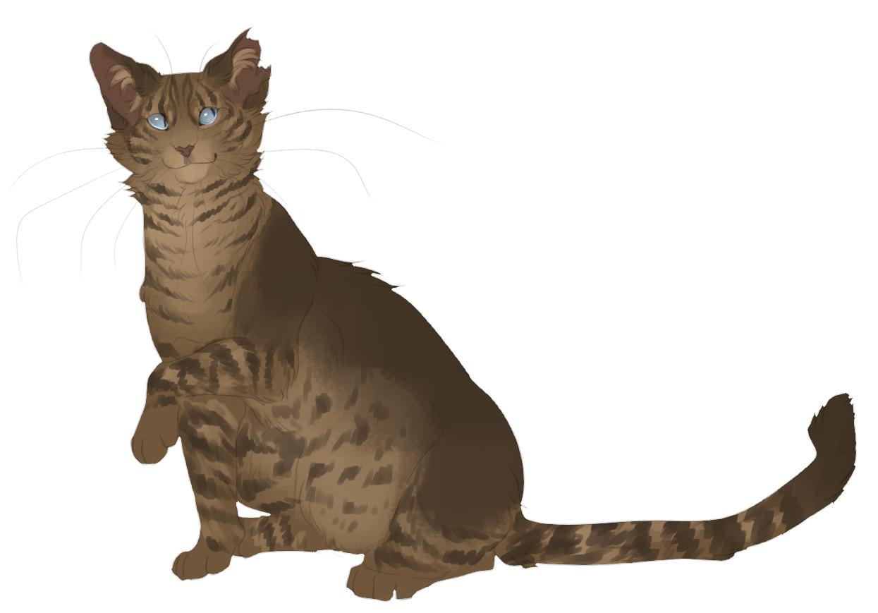Pin by Janine Singleton on harmony clan Warrior cats