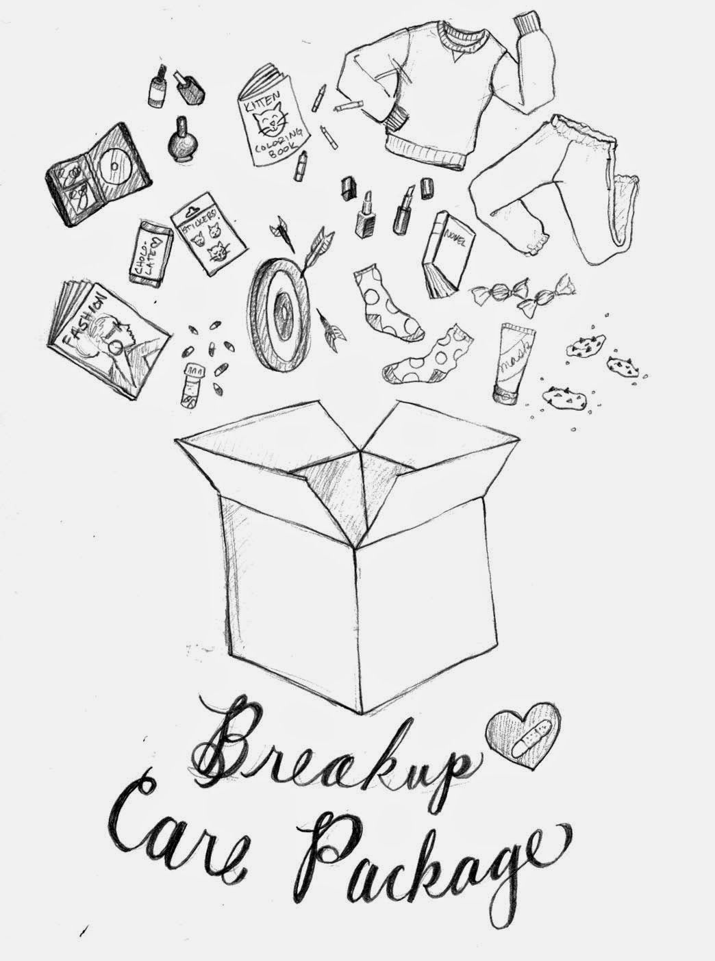 The Spinsterhood Diaries Spinster Shopping Breakup Care Package Care Package Breakup Gift Breakup Kit