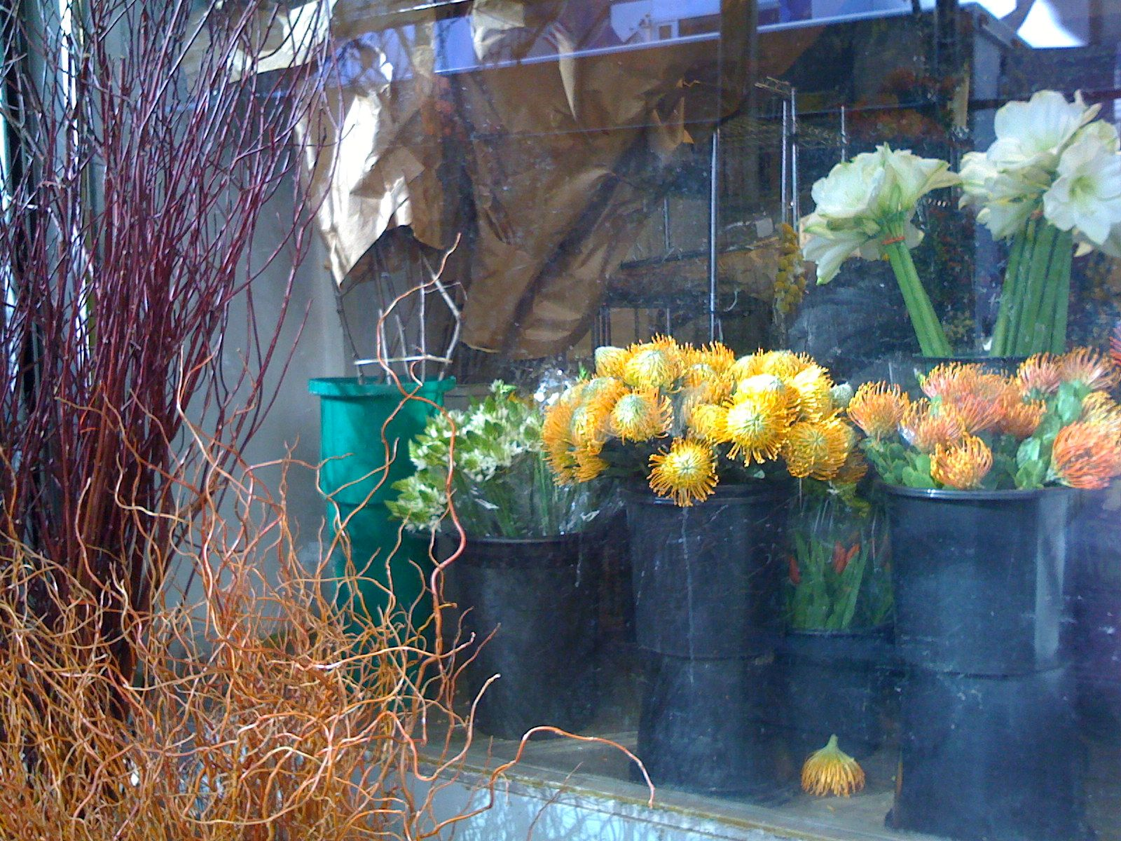 Visit the nyc wholesale flower district local florist florists the nyc flower district a breakdown of which stores specialize in mightylinksfo