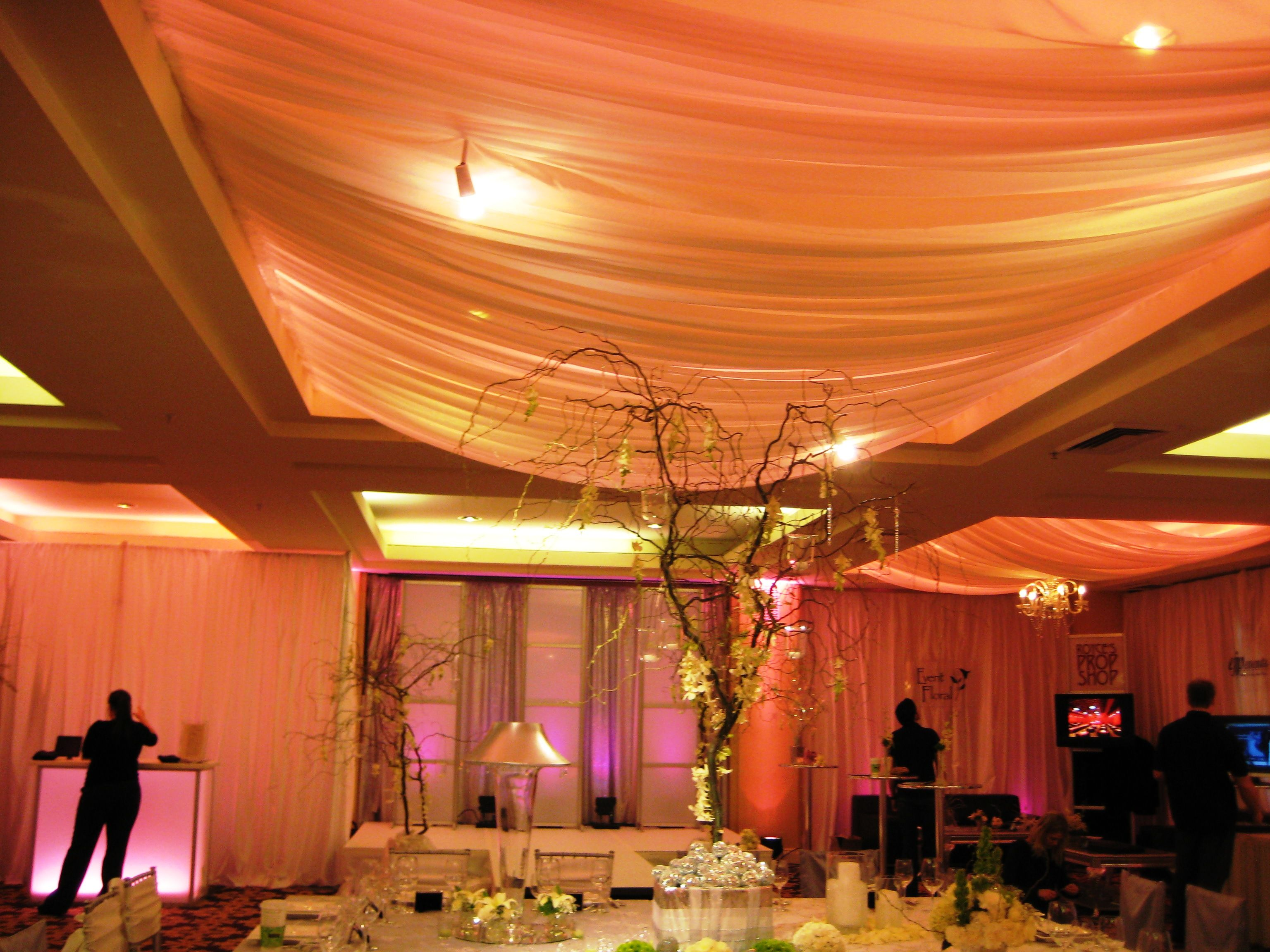 Wedding hall everything wedding pinterest for Ceiling mural ideas