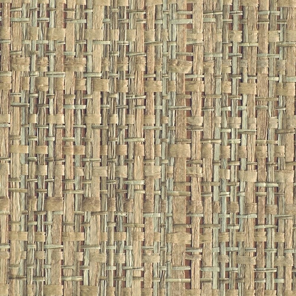 Bamboo Weave Accent Wall: Paper Weave Woven Rattan 1865 In Abaca