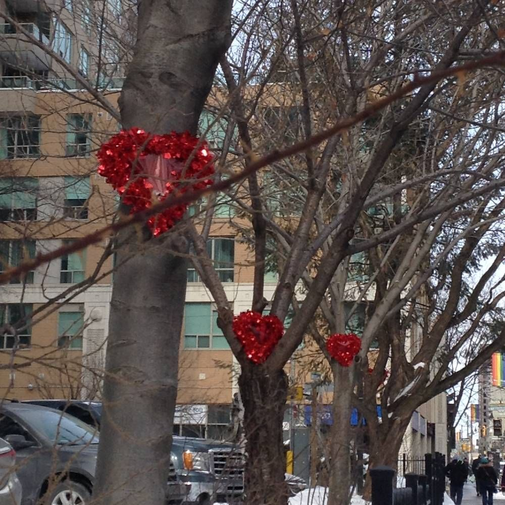 Valentine hearts remain in the trees