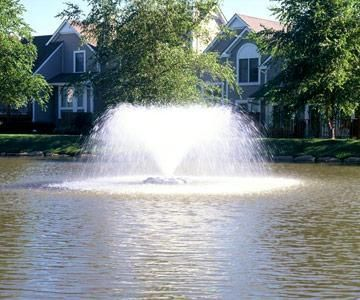 10 tips for maintaining a large natural pond living the for Farm pond maintenance