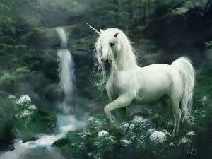 Magical Unicorn Horse Hd Wallpapers Download Animals Birds Desktop Backgrounds Photos In Hd Widesc Unicorn Fantasy Mythical Creatures Mythological Creatures