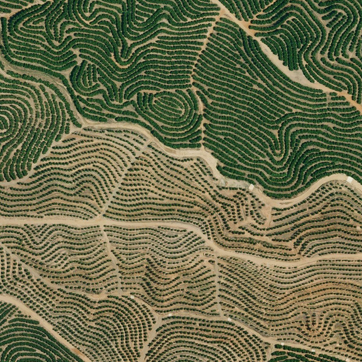 Like the planet has fingerprints. Huelva, Spain 37.243448, -7.283292