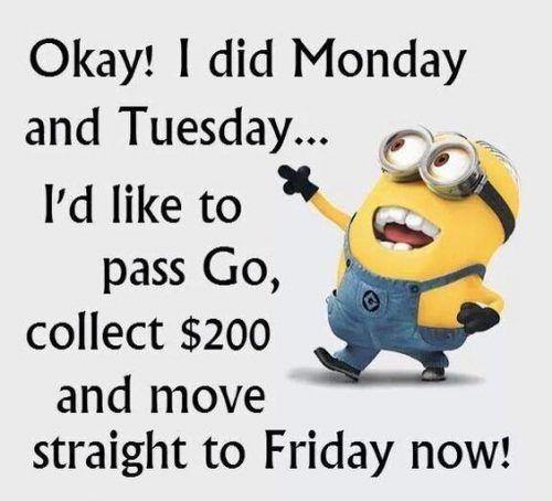 30 Funny Minion Picture Quotes 30 Funny Funny Minion Quotes Minion Minion Quote Picture Qu Happy Wednesday Quotes Hump Day Humor Funny Minion Quotes