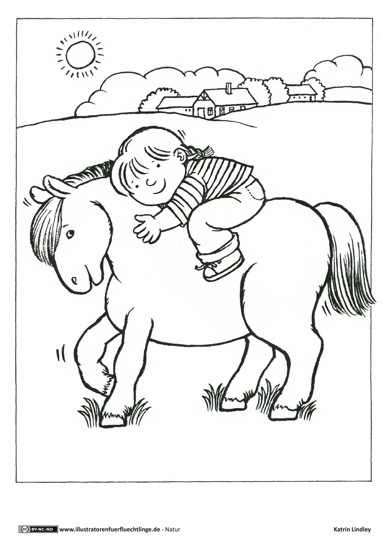 malvorlage pferd mit reiter  aiquruguay