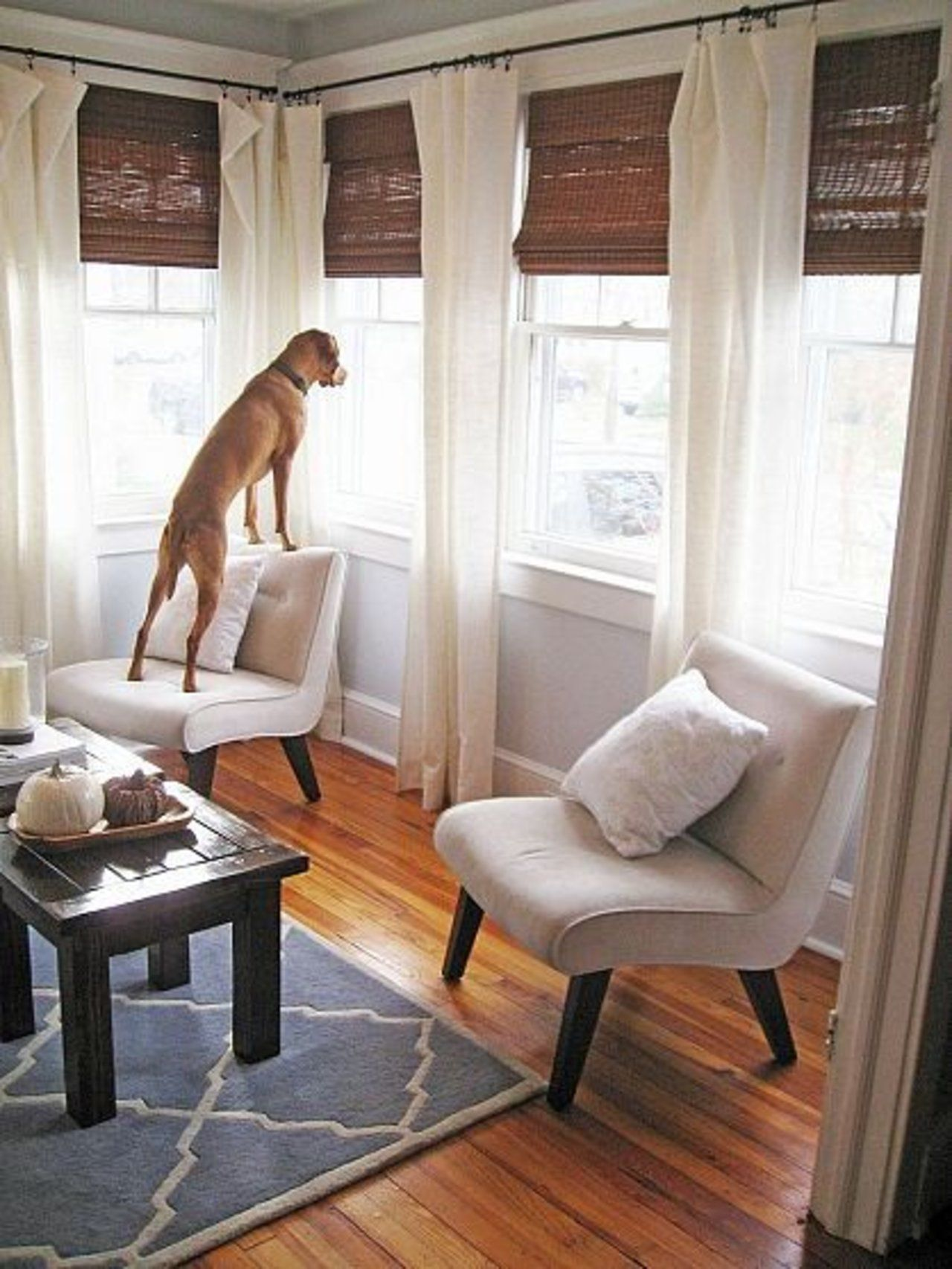 Every awkward window treatment problem solved lovely - Window curtain ideas for living room ...