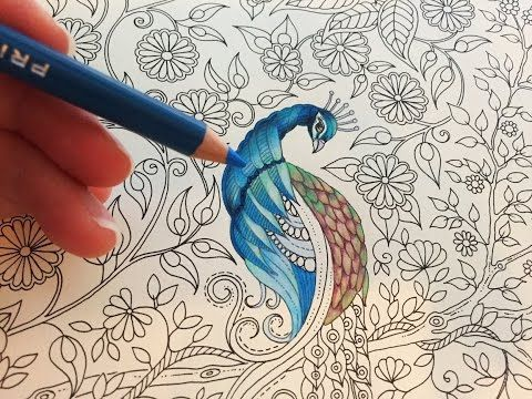Sharing How I Color Peacock With Prismacolor Premier Colored Pencils Pencil Coloring Book Secret Garden By Johanna Basford
