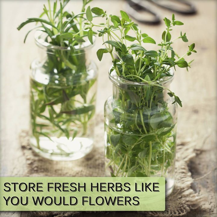 Keep herbs fresher longer by storing them in a vase with water like flowers!