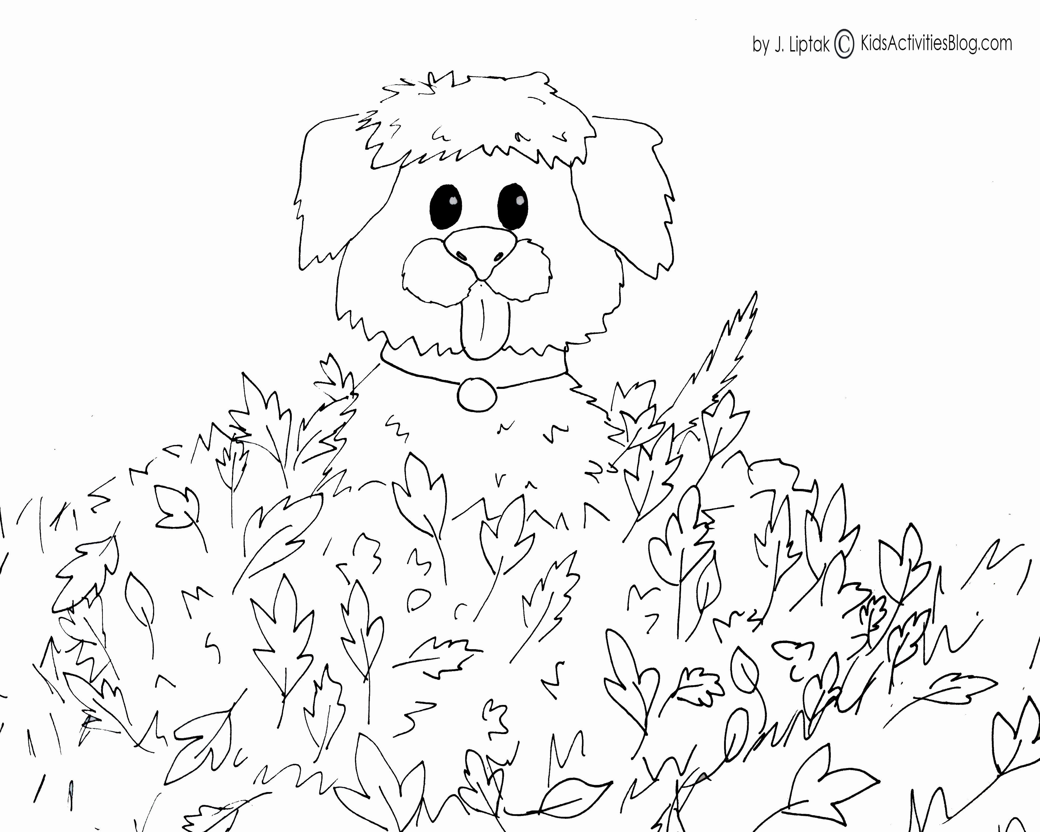 Fall Coloring Pictures Free Elegant Fall Coloring Sheets