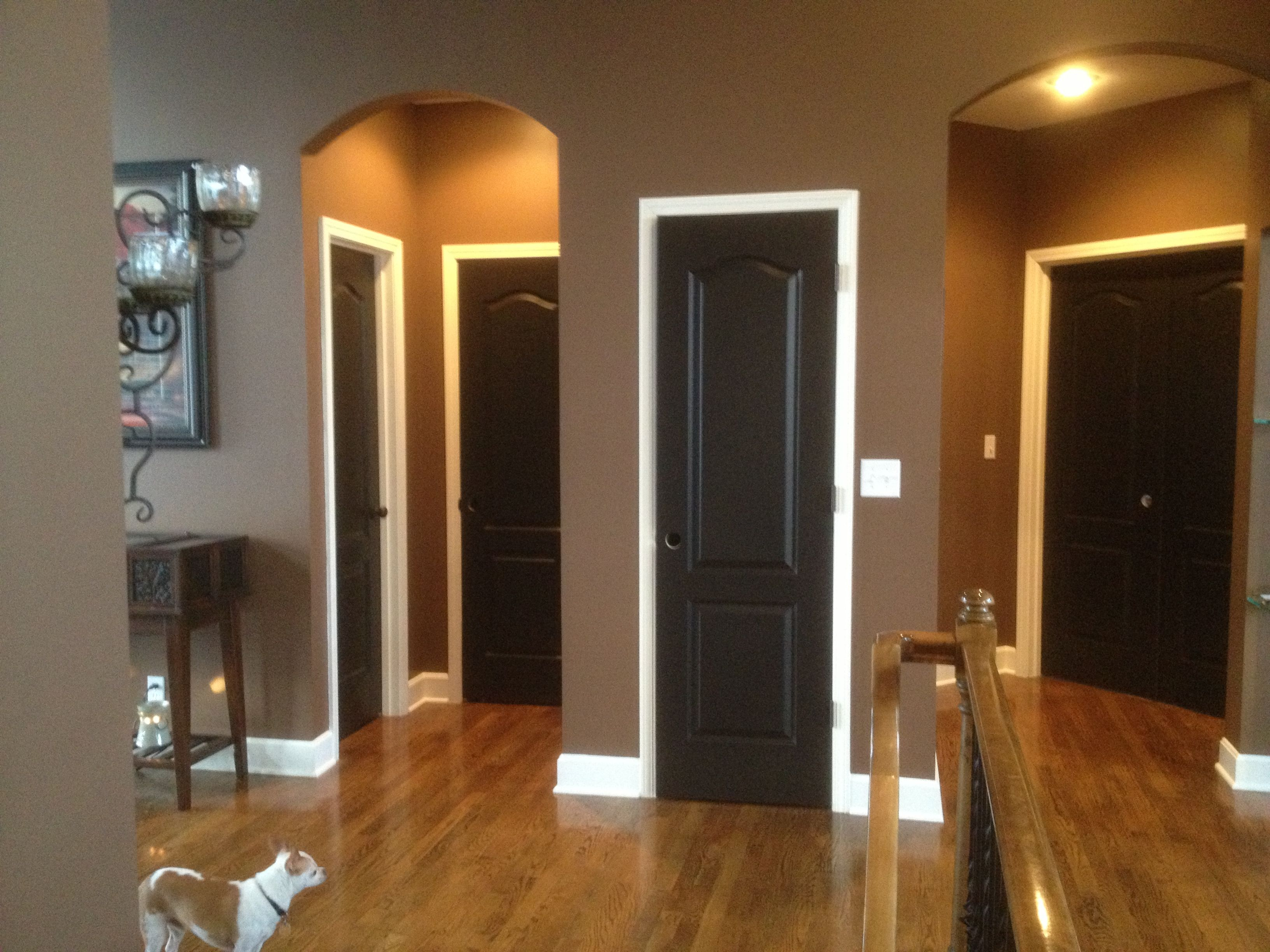 Black doors white trim thank u pinterest for the idea for Brown colors for walls