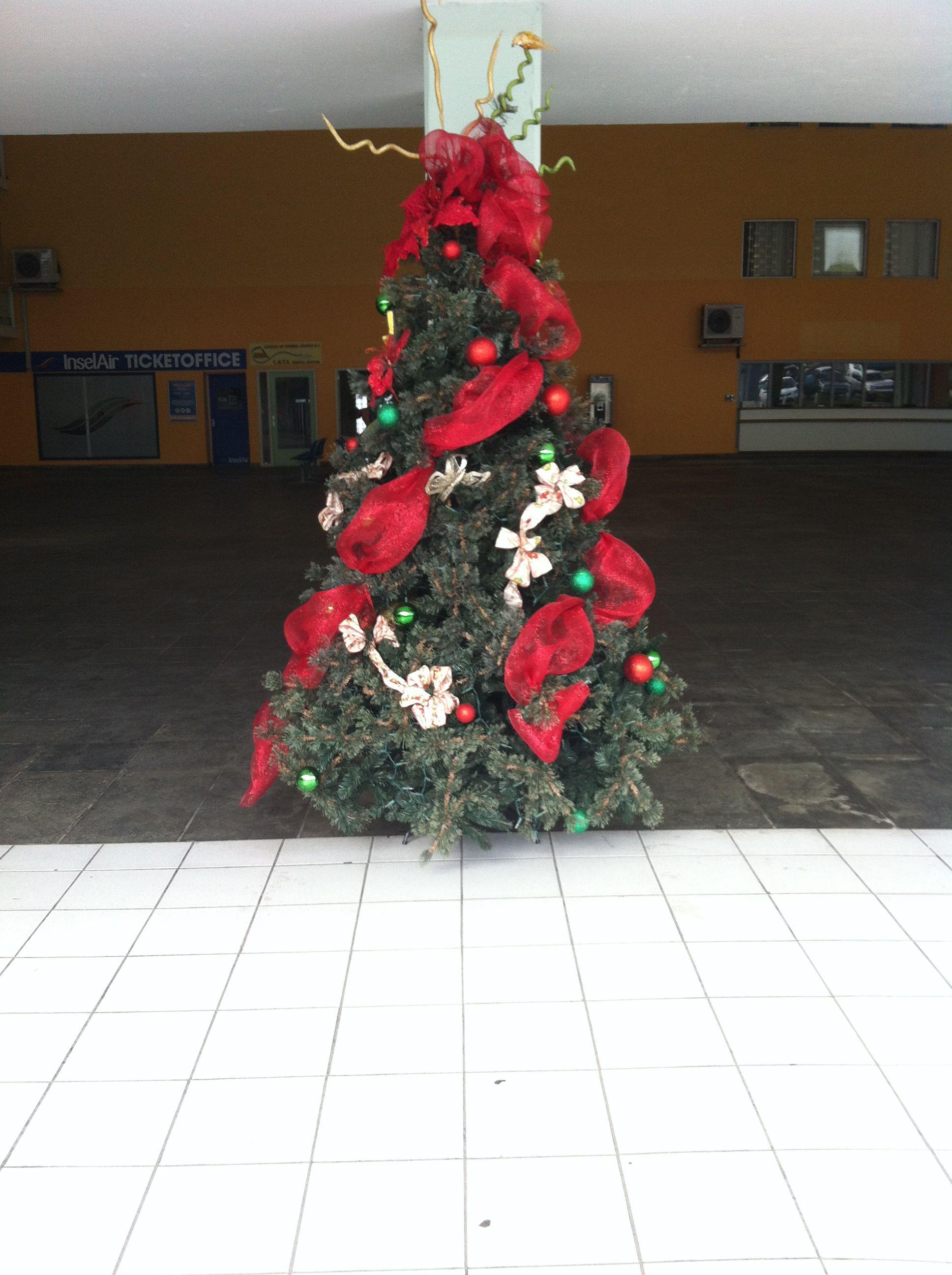 Kerstboom, Hato