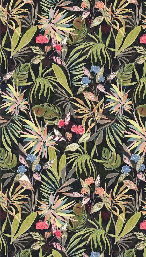 Types Hawaiian Flowers Backgrounds