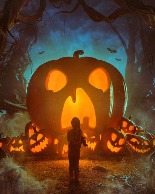 Pin by Annie Haddlesey on Halloween  0e957508d0d6