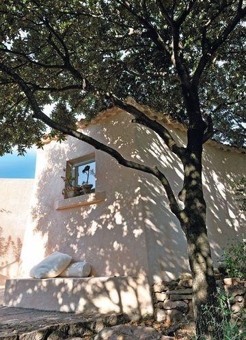 The shadow of a tree in Sardina
