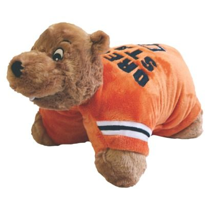okay a pillow pet may seem a little too kiddy but a sports team
