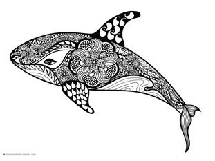Dolphins And Whales Coloring Pages 1 1 1 1 Hand Drawn Vector Illustrations Whale Coloring Pages Zentangle Animals Art