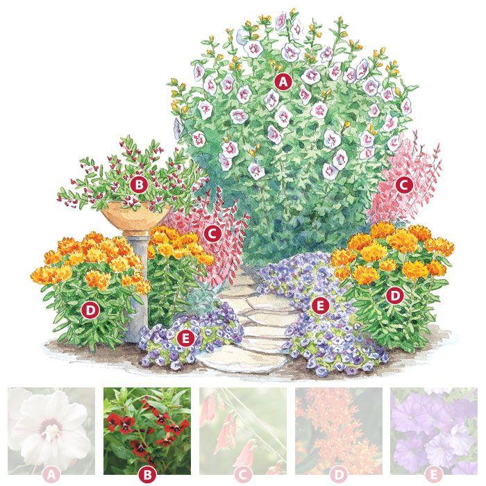 Grow A Garden Hummingbirds Love Shade Garden 400 x 300