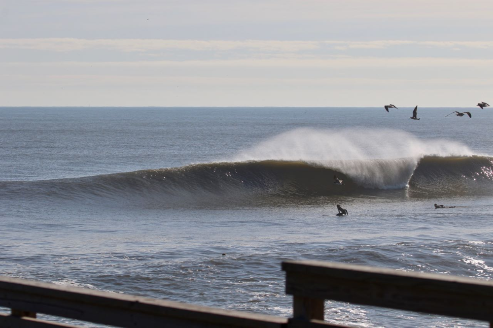 Surf Reports Florida Surf Report Jacksonville Beach Surf Report Surfing Jacksonville Beach Jacksonville Beach Pier