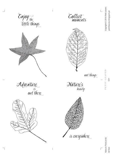 Petit Leaves