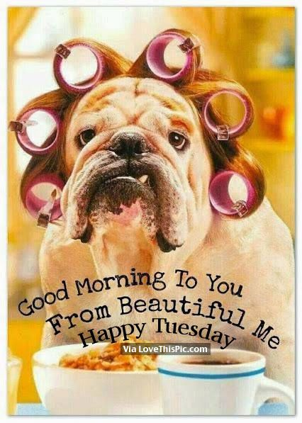Good Morning To You From Beautiful Me Happy Tuesday Tuesday