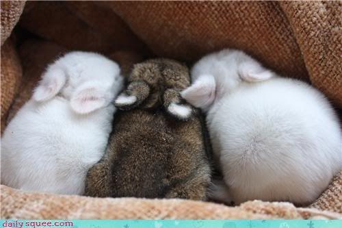 babies so tiny!