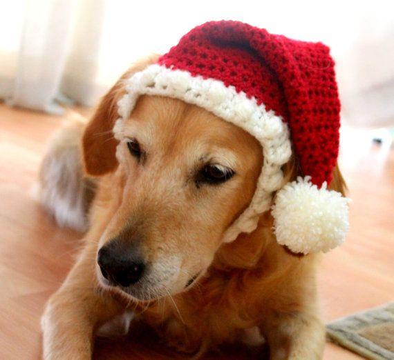 Santa Hat For Dogs Dog Santa Hat Holiday Dog Hat Christmas Hat For Dogs Large Breed Dog Hat Christmas Dog Hat Santa Dog Hat In 2021 Crochet Dog Clothes Christmas Dog