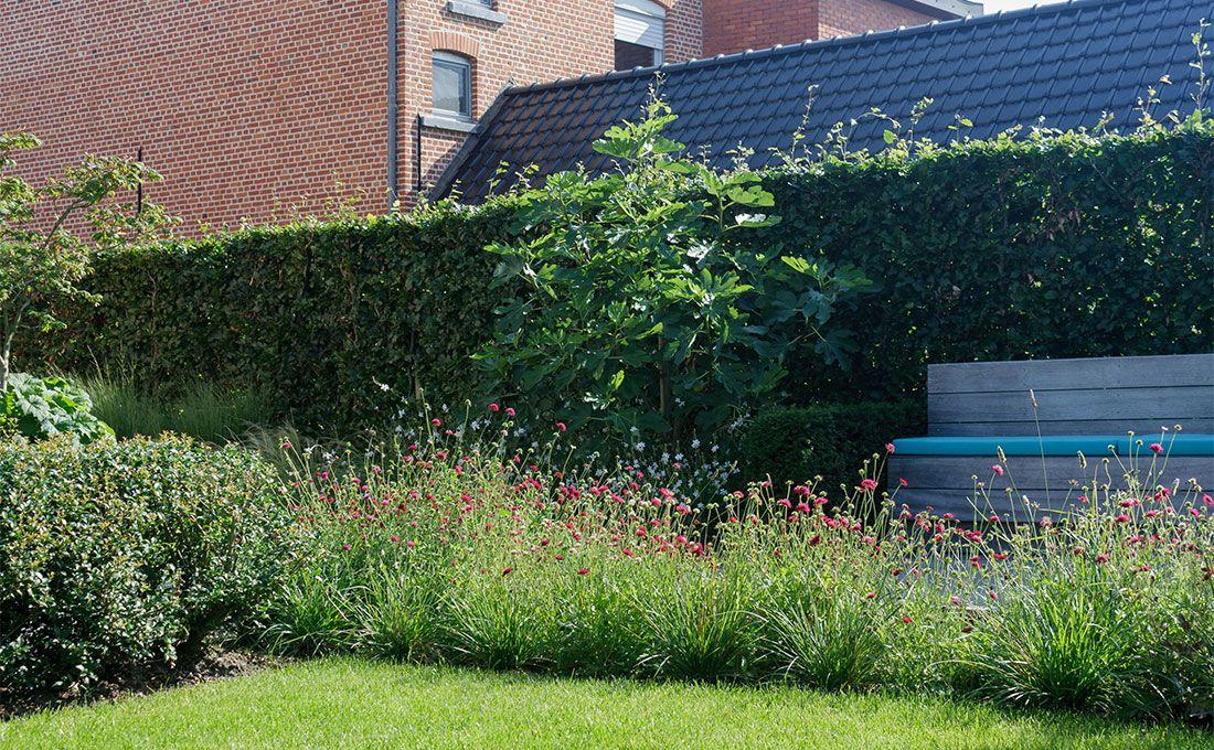 Kleine moderne tuin tuinarchitect stefaan willems green
