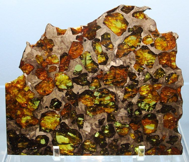 Esquel Pallasite Meteorite Slice, 1951. Esquel is considered the King of the Pallasites due to its very stable nature. It is a single find in 1951 that weighed 755 kilos! Since that time, almost all of this beautiful Pallasite has been sold and is gone - making it one of the harder to add to your collection. Esquel was discovered sometime before 1951 in Argentina. The exact date of discovery is unknown. This and more rare mineral specimens for sale on CuratorsEye.com