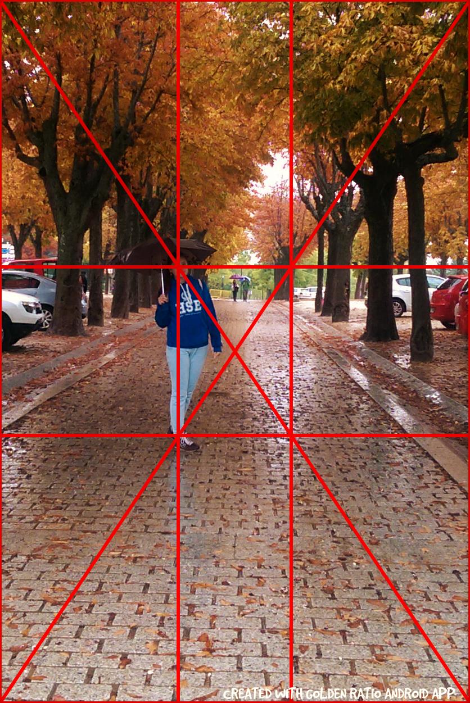 симметричное построение в фотографии взгляды как