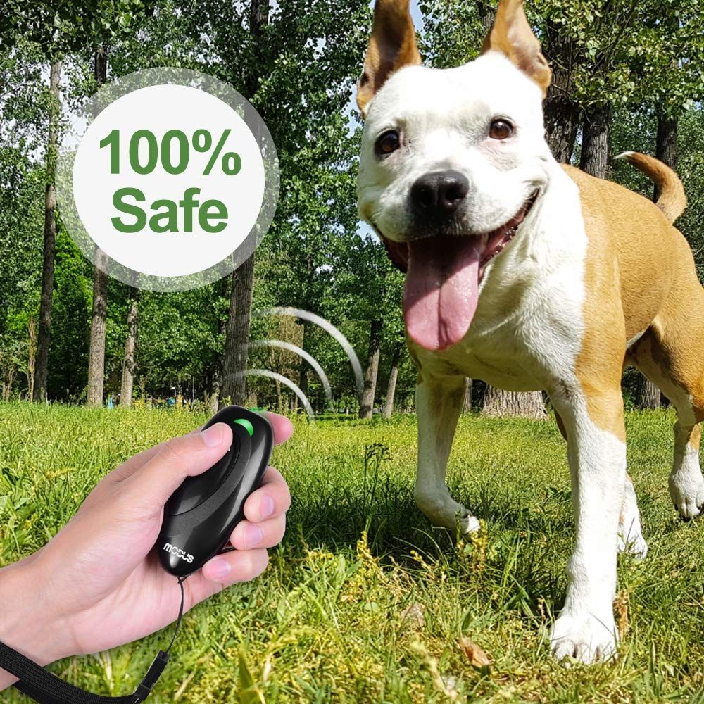 How To Control Your Dog's Barking