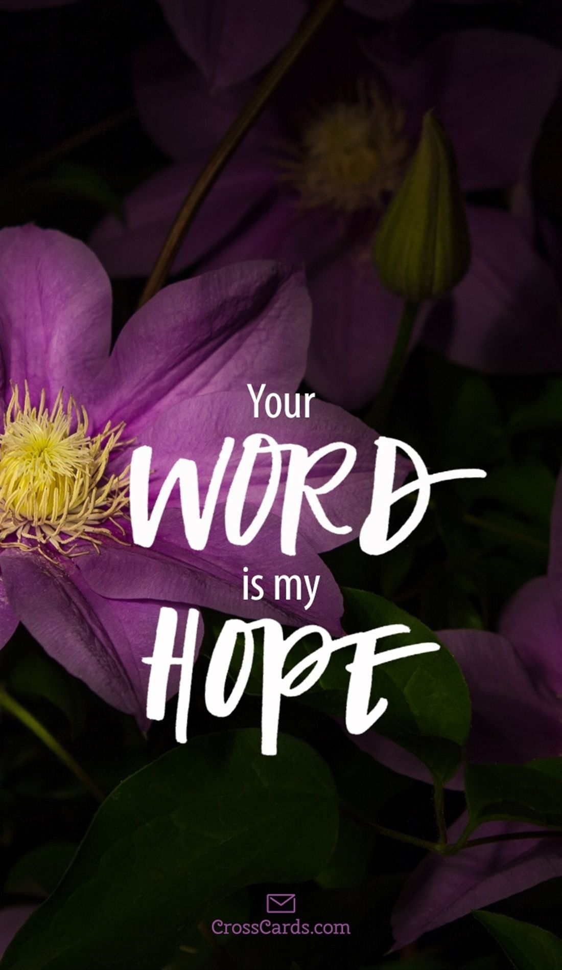 your word is my hope free christian mobile lock screen wallpaper