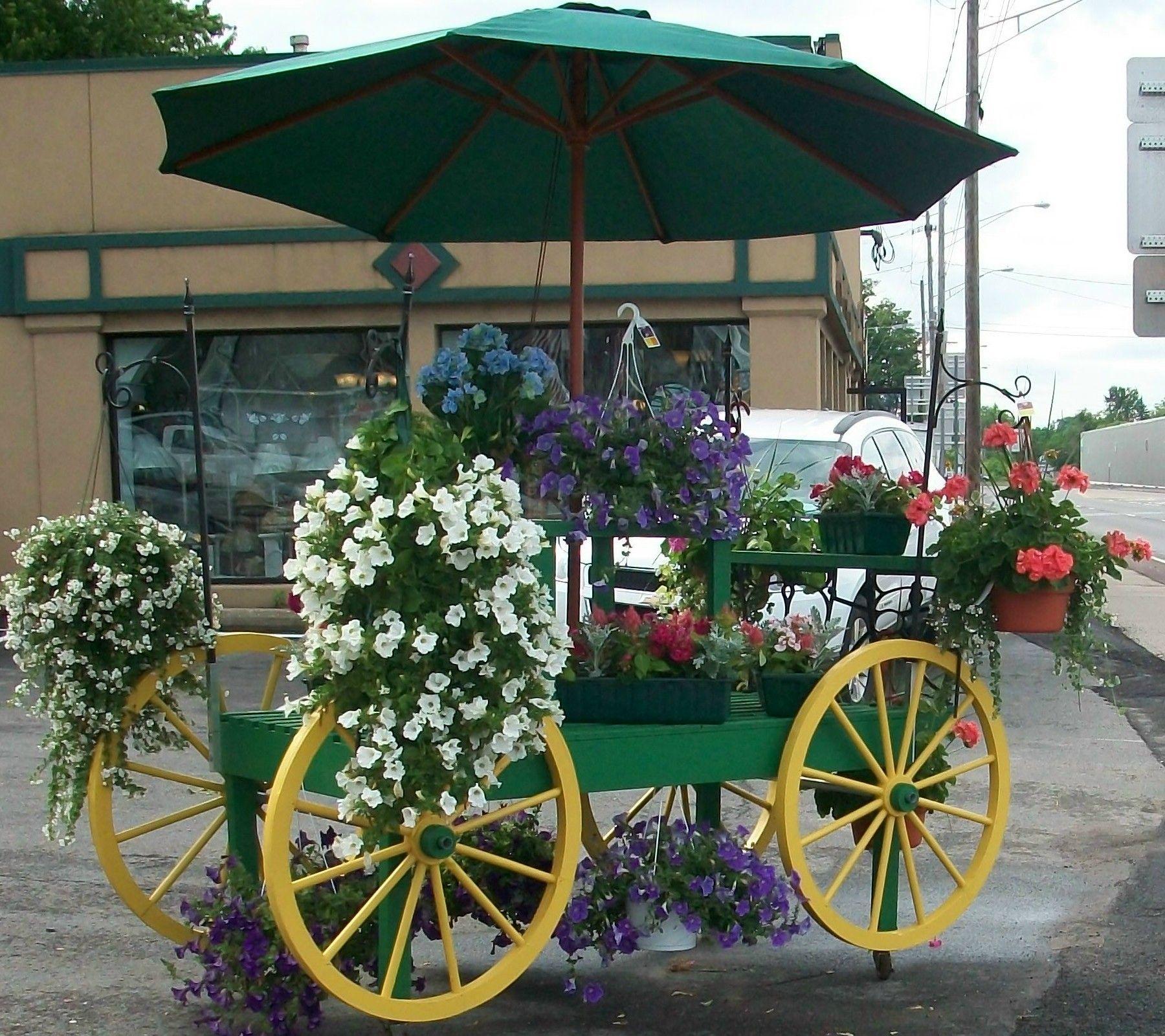 Flower Cart in front of the shop. Flower cart, Flower