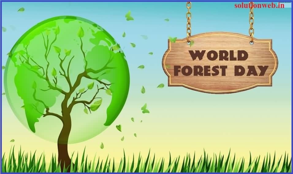 World Forestry Day 2021 : International Day of Forests ...