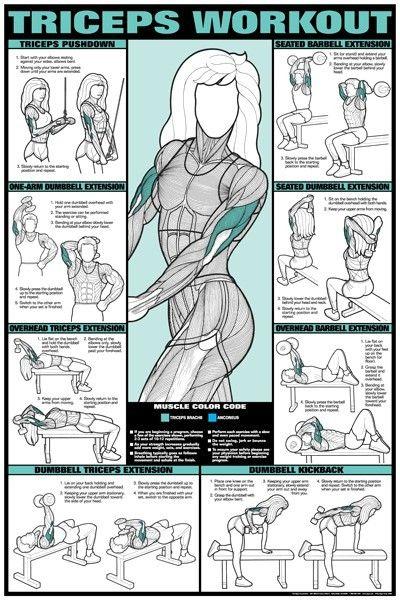 Pecho y triceps mujeres