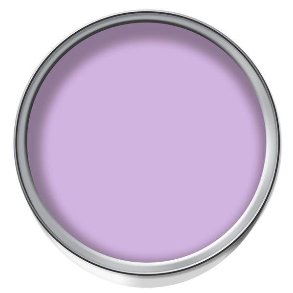 wilko colour matt emulsion paint powder purple. Black Bedroom Furniture Sets. Home Design Ideas