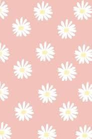 Resultado de imagem para cute wallpapers
