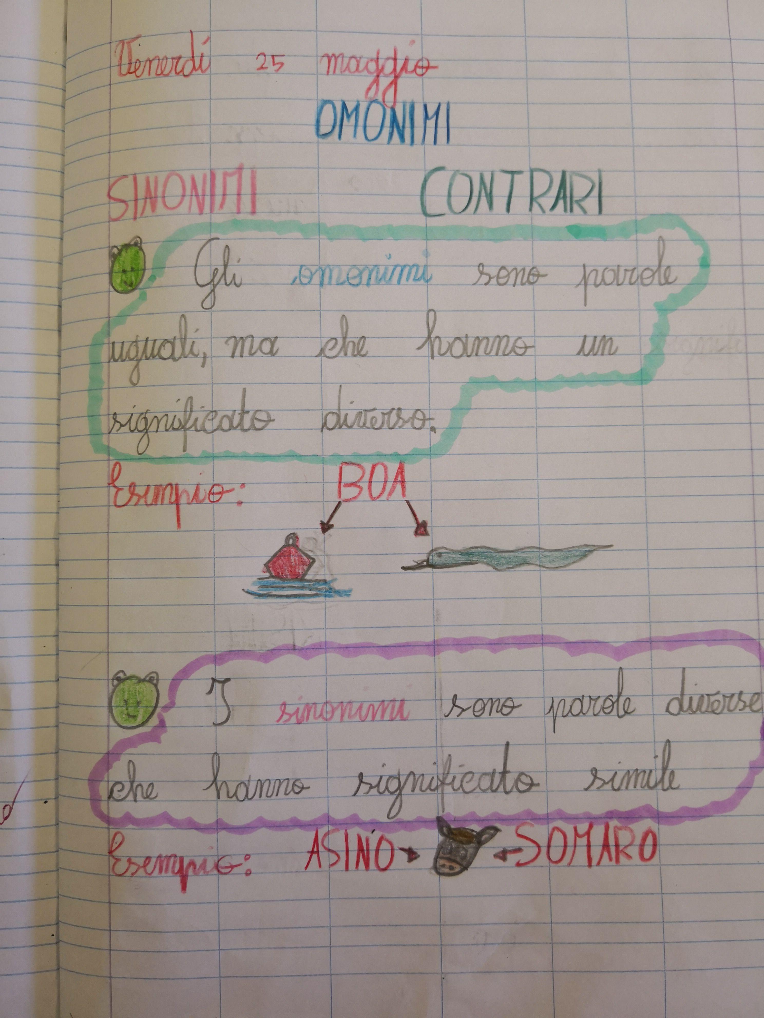 Omonimi Sinonimi E Contrari 1 Scuola Lingua Italiana Lingua E