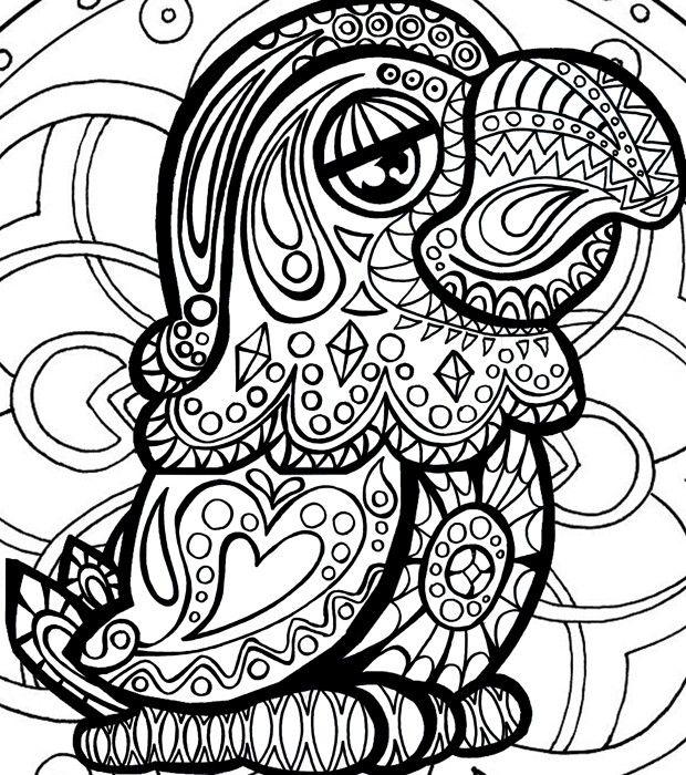 Conhecido Entre na onda dos livros para colorir e baixe o desenho do Louro  FH16