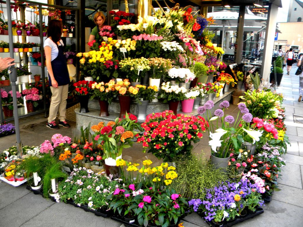 Flower Shop 21 Flower Shop Pinterest Flower Shops Flower