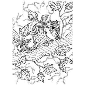 Colouring In Sheets Art Craft Art Supplies Craft Supplies Kid S Craft Art Craft Animal Coloring Pages Monster Coloring Pages School Art Supplies