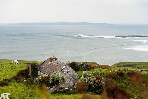 Lately: thinking abut a coastal farm