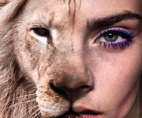 Homepage Justproud Lion Tattoo Crown Tattoo Design Tatto